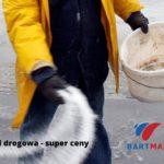 sól drogowa czyli chlorek sodu – najlepszy sposób na oblodzenie